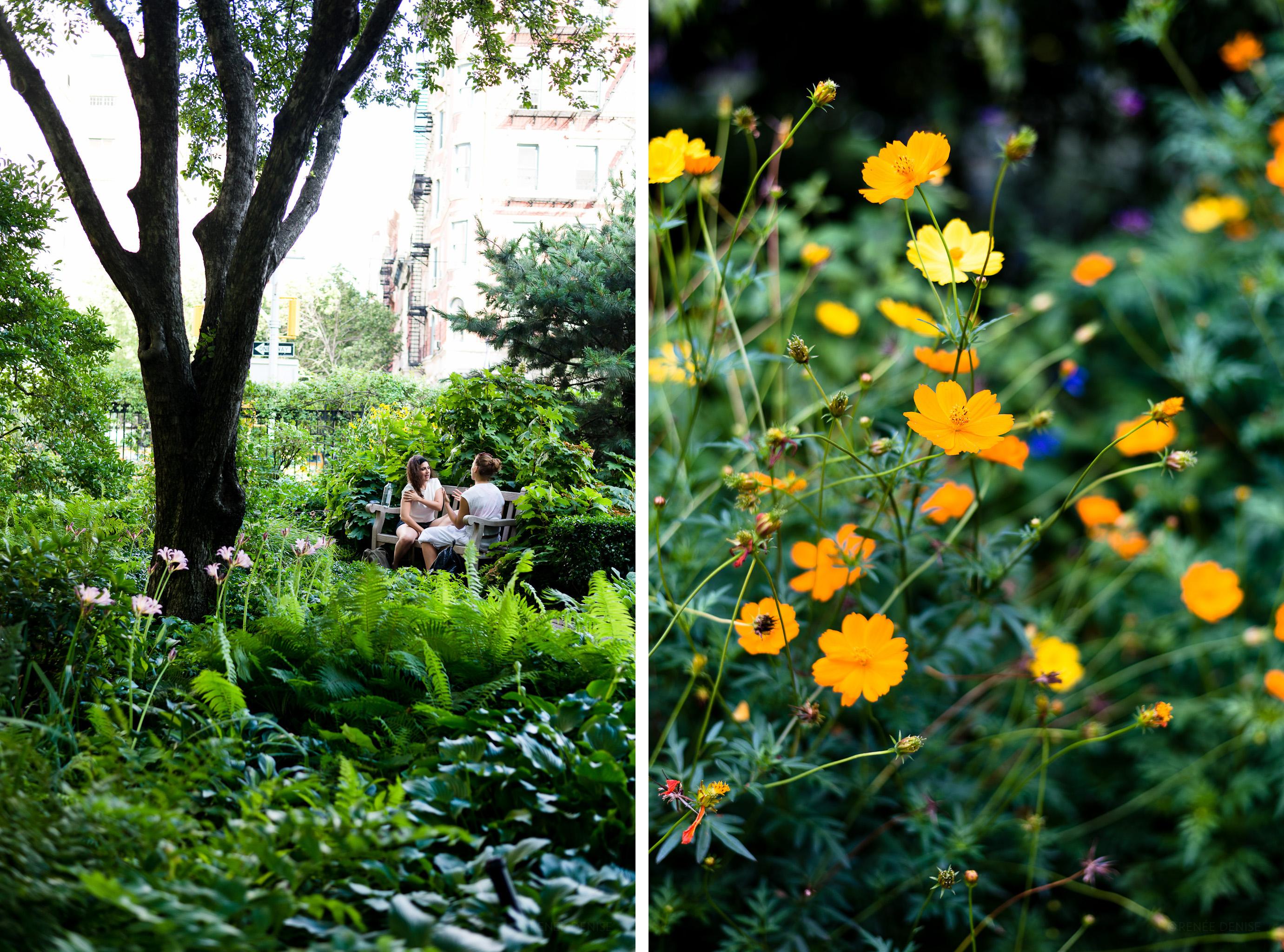 two-gardens-1-flavorsoflight