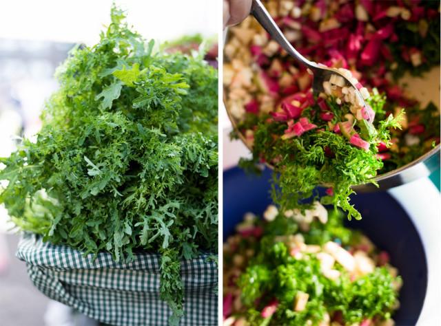 Autumn Salad - Mustard Greens
