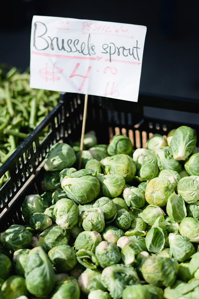 Autumn Greenmarket: Brussel Sprouts