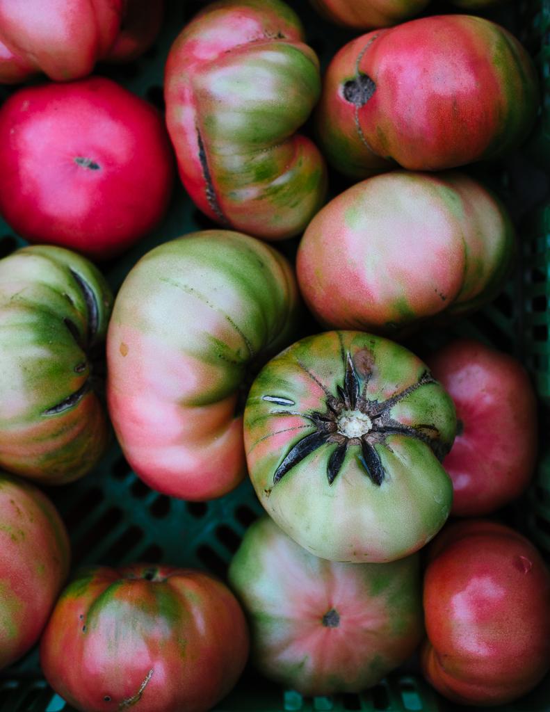 Autumn: Union Square Greenmarket | Flavors of Light